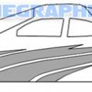 1/4 Scale Stripe Kit 3